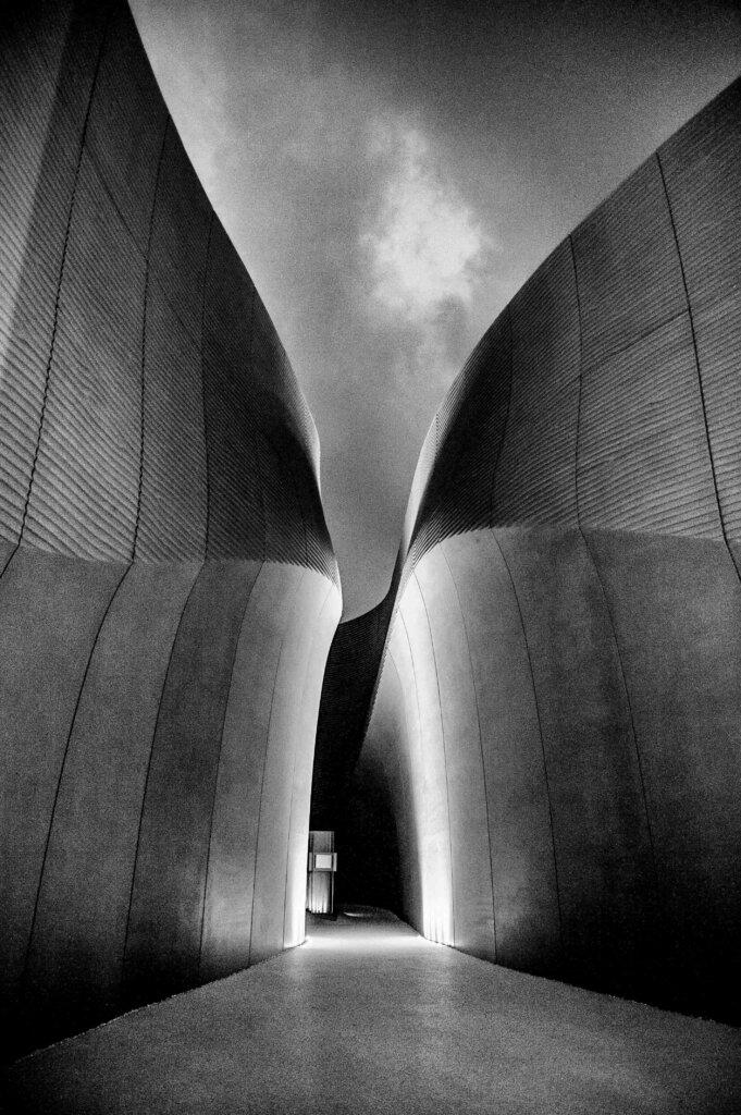 Curves © Antonella Sacconi