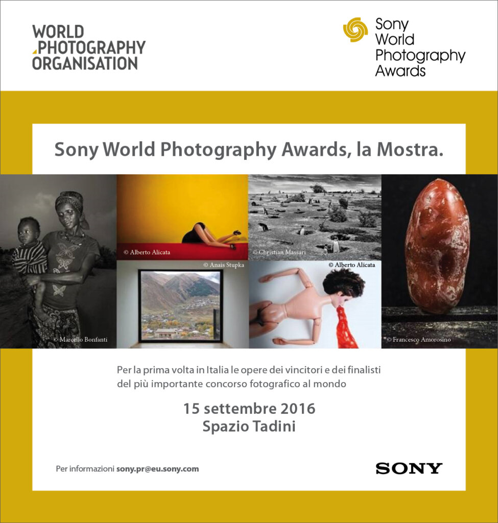 STD Sony World photography Award