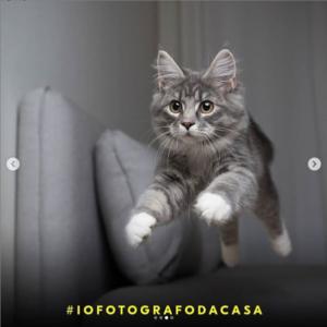 #iofotografodacasa Nikon