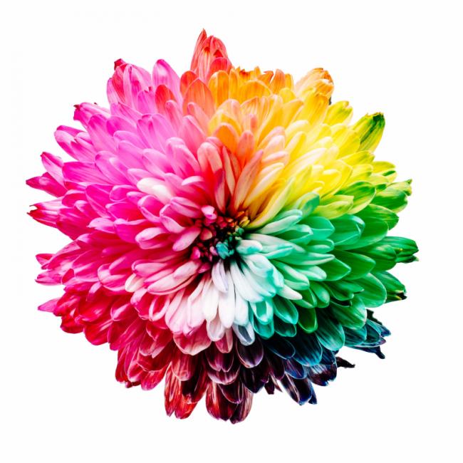 colori in raw