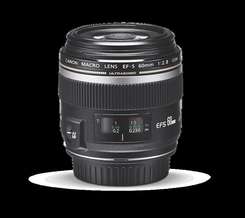 Canon EF-S 60 mm f/2.8 Macro USM