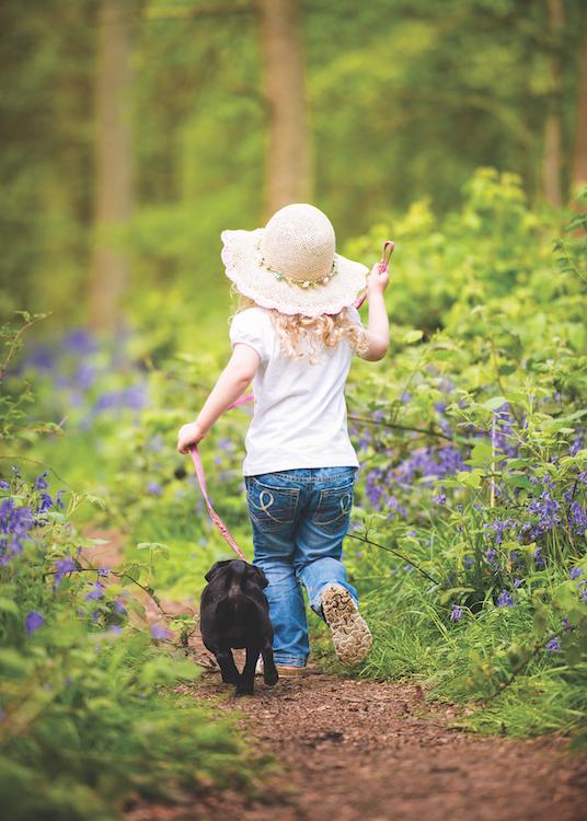 Bambina cammina nel bosco con cane