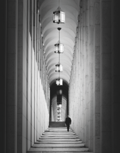 Tall Posts © Tony Sellen