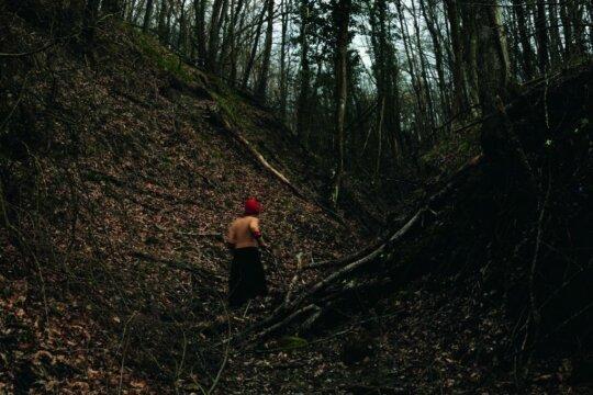 La raccolta del legno, Isola © Simona Ghizzoni
