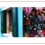 Consigli di Canon - colori vivaci