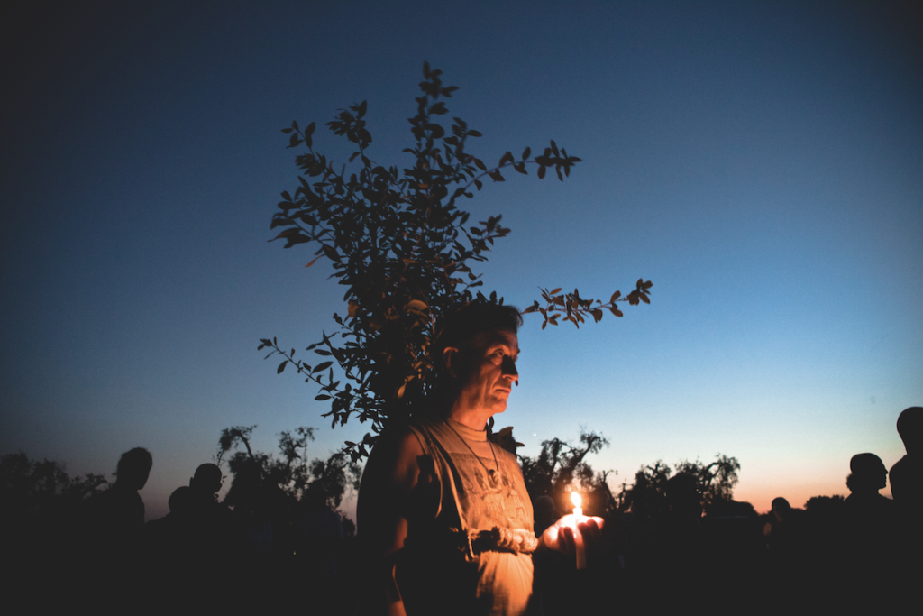 Oria, estate 2016. Un manifestante durante un sit-in di protesta contro l'eradicazione degli ulivi dovuta all'emergenza Xylella. © Massimo Barberio