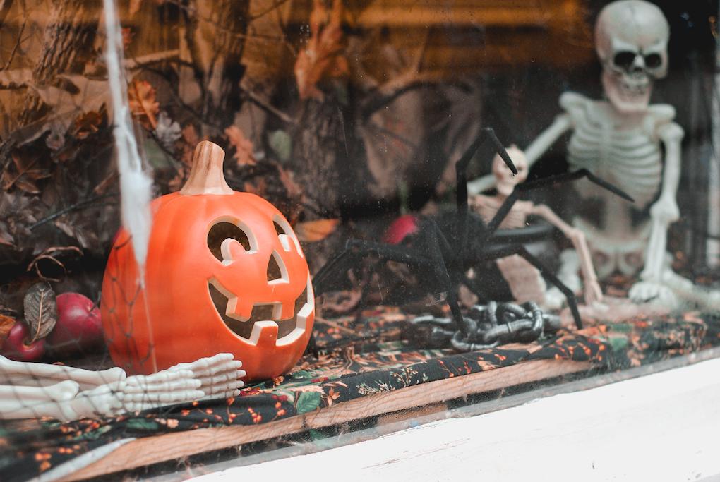 Halloween. zucche e scheletri