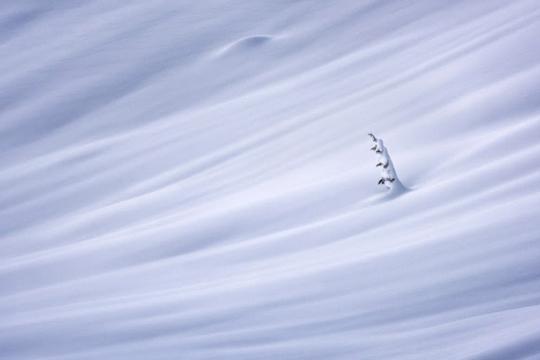 Hibernate © Matt Jackisch