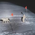 un'orsa e il suo cucciolo si avvicinano alle attrezzature posizionate dagli scienziati