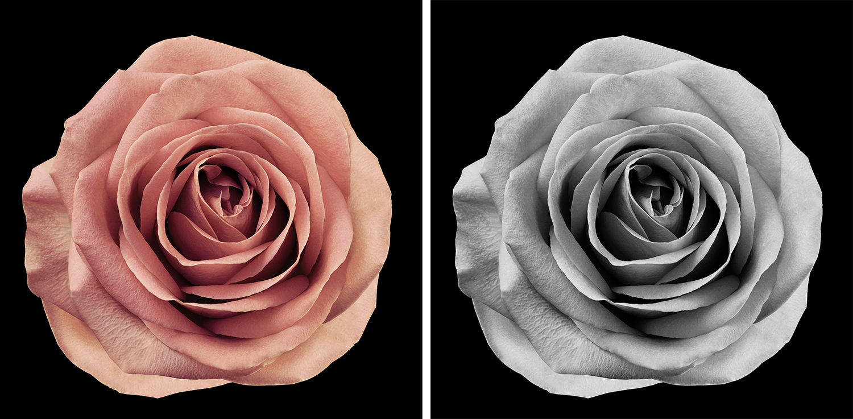 fotografare in bianco e nero